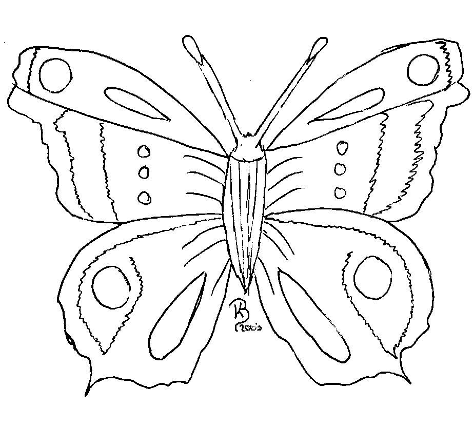 Gemütlich Erweiterte Malvorlagen Schmetterling Fotos - Ideen färben ...