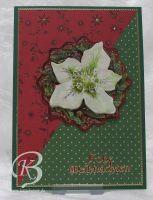 2014-weihnachtskarte26